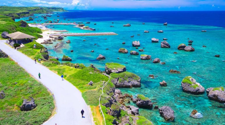 The One and Only Okinawa